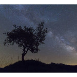 The stars in the Pallars – Starlight